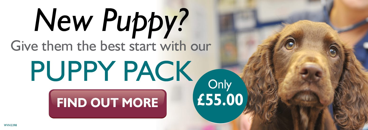 Puppy Pack covering puppy injections, flea & worm treatment, and much more for only £55 at vets in Lymm
